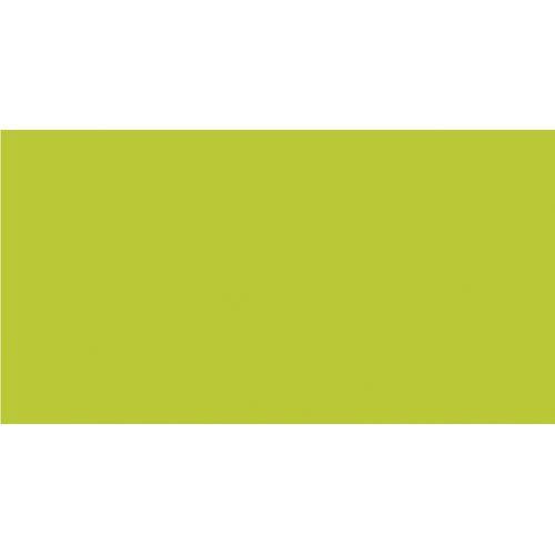 Бумага цв. зеленой липы Интенсив  A4 80г. 50л. LG46